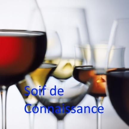 verres-de-vin-rouge-vin-blanc-et-rose-10518066bmvli