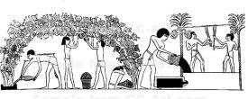 Vignes_et_pressurage_du_vin_dans_l'ancienne_Égypte
